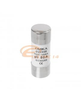 Siguranta cilindrica 22x58 / 100A