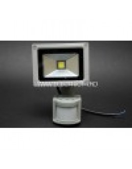 Proiector Led 10w Senzor Lumina Rece
