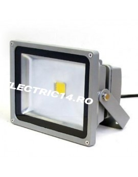 Proiector Led 50w Eco Lumina Rece