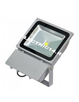 Proiector Led 100w Eco Lumina Rece