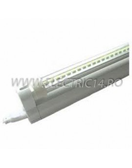 Tub Led T5+Suport 60cm 6w Clar Lumina Rece